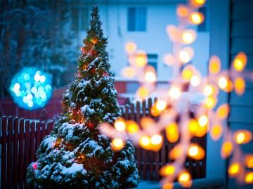 Mire van igazán szükséged karácsonykor?