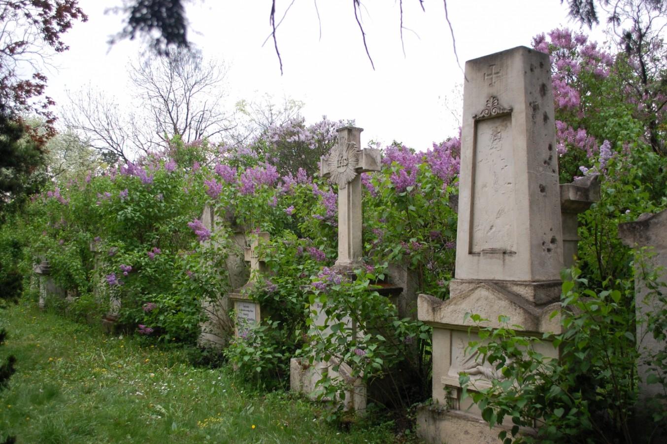Bécs kezdőknek és haladóknak - - 8. rész: Séta a bécsi temetőkben