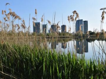 Videótúra Torontóban - Bemutatkozik a High Park