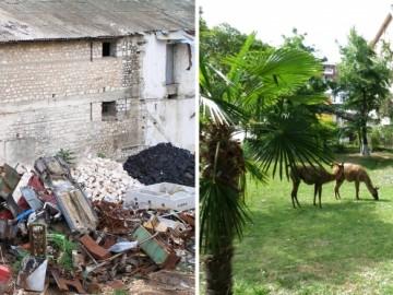 Albánia - a szabad szemeteléstől a környezettudatosság felé