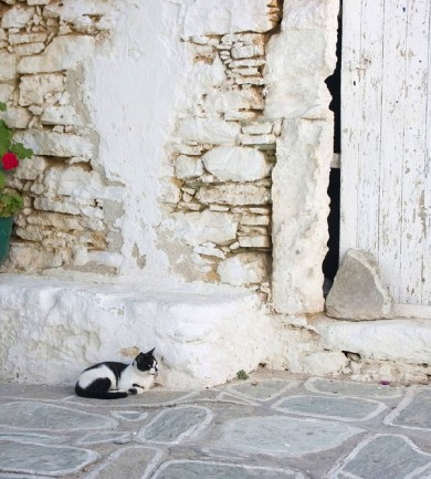 Ébred a görög környezettudat
