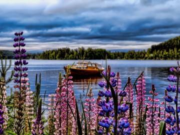Érdekességek Finnországból - - 3. rész: közlekedés, nyelvtudás, munka és menekültek