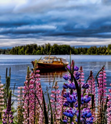 Érdekességek Finnországból
