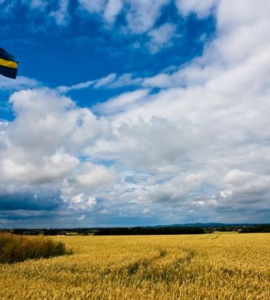 6 dolog, amit a svédektől tanultam