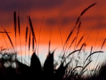 Dél-Kaliforniában is kopogtat már az ősz