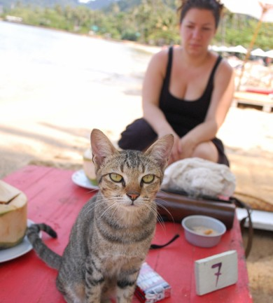 Thaiföld, a mosolyok országa – 8. rész