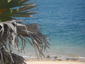 Kapcsolódj ki csigalépésben Lamu szigetén