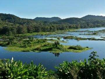 Hátizsákkal Brazíliában 1. rész - Kakaófarm az Atlanti-parti Esőerdőben